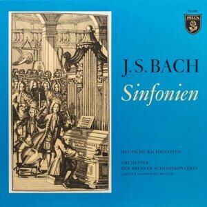 Deutsche Bachsolisten / Helmut Winschermann / Orchester der Brühler Schlosskonzerte 歌手頭像