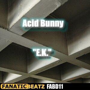 Acid Bunny 歌手頭像