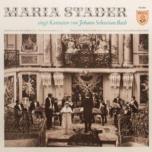 Orchester der Brühler Schlosskonzerte / Helmut Müller-Brühl 歌手頭像