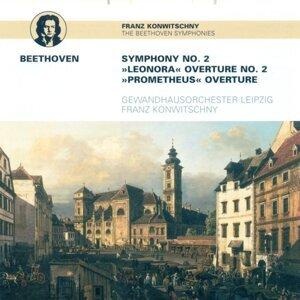 Leipzig Gewandhaus Orchestra 歌手頭像