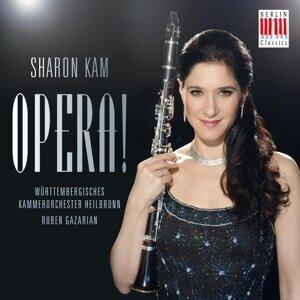 Sharon Kam, Württembergisches Kammerorchester Heilbronn & Ruben Gazarian 歌手頭像