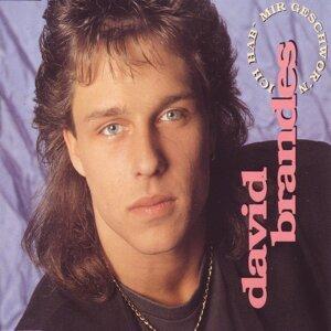 David Brandes 歌手頭像