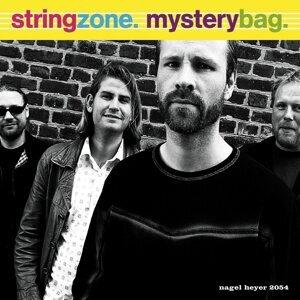 String Zone 歌手頭像