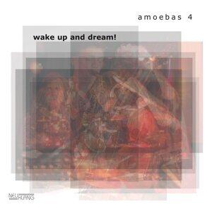 amoebas 4 歌手頭像