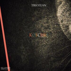 Triozean 歌手頭像