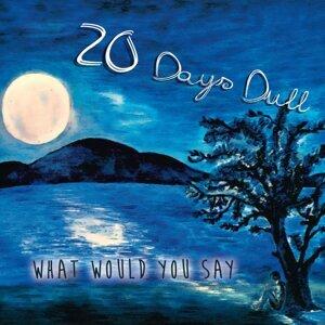 20 Days Dull 歌手頭像