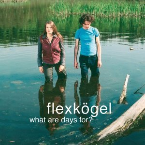 Flexkögel 歌手頭像
