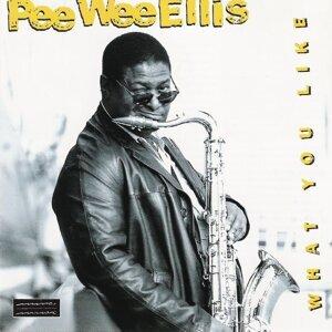 Pee Wee Ellis & NDR Bigband 歌手頭像