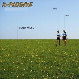 X-Plosive 歌手頭像