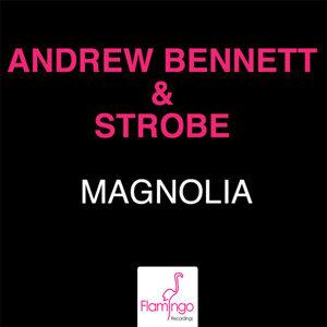 Andrew Bennett and Strobe 歌手頭像