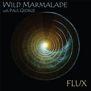 Wild Marmalade 歌手頭像