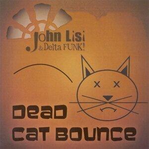 John Lisi & Delta Funk 歌手頭像