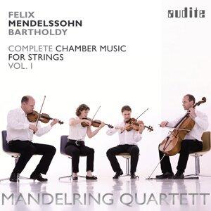 Mandelring Quartett 歌手頭像