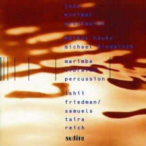 Markus Hauke, Michael Kiedaisch & Jazz minimal avantgarde 歌手頭像