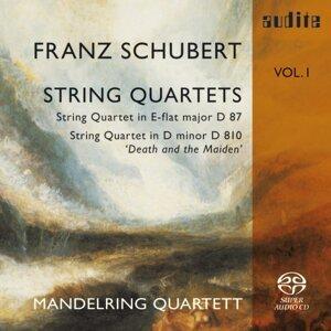 Mandelring Quartett & Mandelring Quartett 歌手頭像