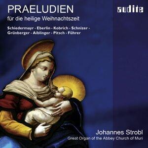 Johannes Strobl 歌手頭像