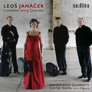 Gunter Teuffel & Mandelring Quartett 歌手頭像