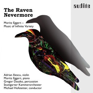 Stuttgarter Kammerorchester & Michael Hofstetter 歌手頭像