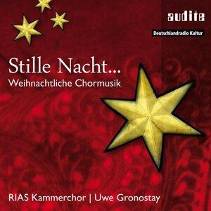 RIAS Kammerchor & Uwe Gronostay 歌手頭像
