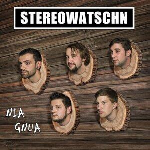 Stereowatschn 歌手頭像