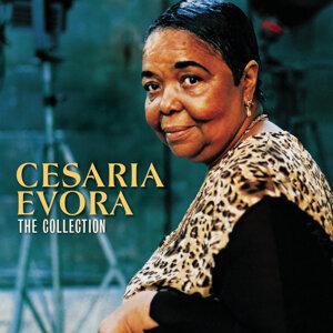 Cesaria Evora (亞莎莉亞艾芙拉) 歌手頭像