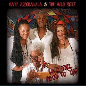 Gaye Adegbalola & the Wild Rutz 歌手頭像