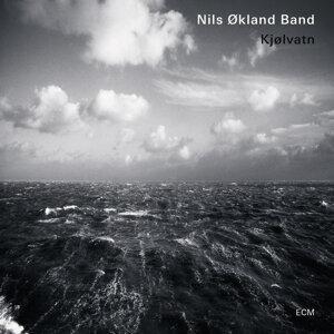 Nils Økland Band 歌手頭像