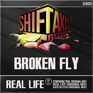 Broken Fly