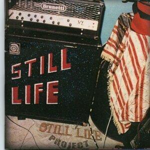 Still Life Projector