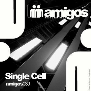 Single Cell