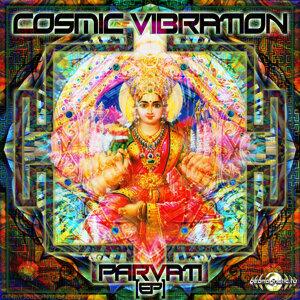 Cosmic Vibration 歌手頭像