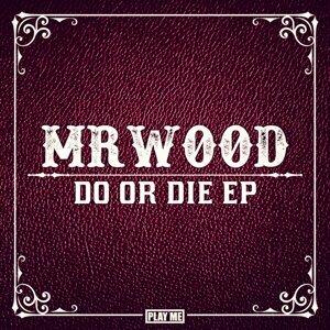 MrWood 歌手頭像