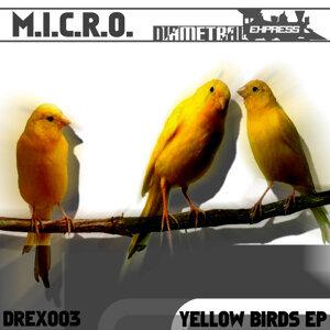 M.i.c.r.o. 歌手頭像