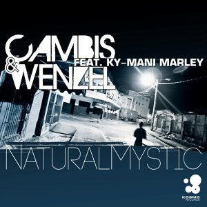 Cambis & Wenzel feat. Ky-Mani Marley 歌手頭像