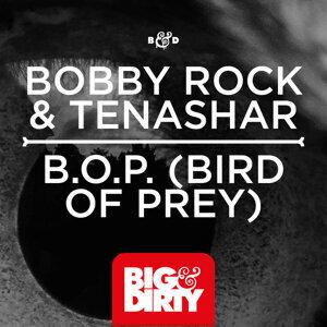 Bobby Rock and Tenashar 歌手頭像