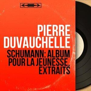 Pierre Duvauchelle 歌手頭像