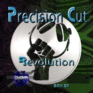 Precision Cut