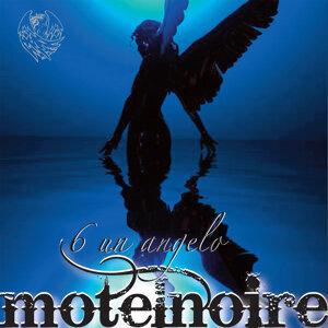 MotelNoire 歌手頭像