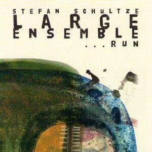 Stefan Schultze - Large Ensemble 歌手頭像