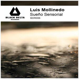 Luis Mollinedo 歌手頭像