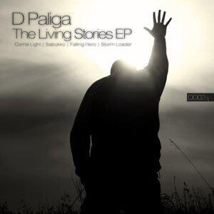 D Paliga 歌手頭像