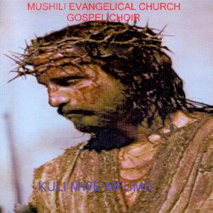 Mushili Evangelical Church Gospel Choir 歌手頭像