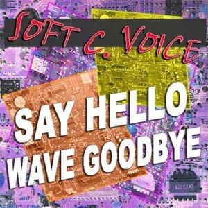 Soft C. Voice 歌手頭像
