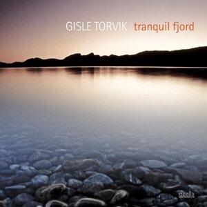 Gisle Torvik 歌手頭像