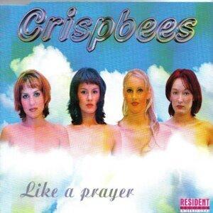 Crispbees 歌手頭像