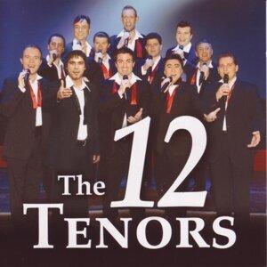The 12 Tenors - Die 12 Tenöre 歌手頭像