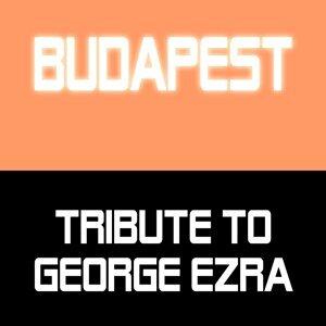 Tribute to George Ezra