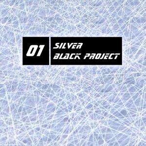 Silver 歌手頭像