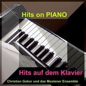Christian Gabor und das Moslener Ensemble 歌手頭像