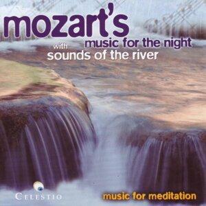 MOZART - The Slovene Philharmonic Orchestra - Das Slovenische Philharmonische Orchester 歌手頭像